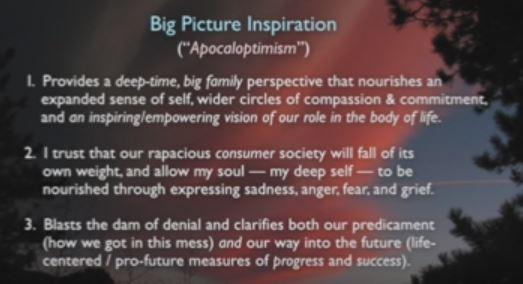 apocaloptimism-1-3